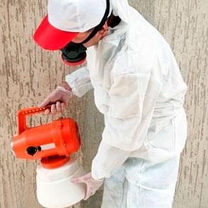 Fumigación y Control de plagas: una obligación y una necesidad para tu bar