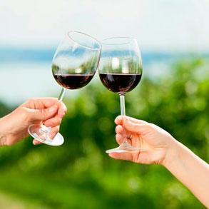Variedades de vino tinto para tu bar