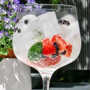 ¡Un buen Gin Tonic: dúo de tónica y ginebra para tu negocio!