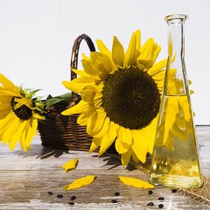 Lo que necesitas saber para elegir un proveedor de aceite de girasol