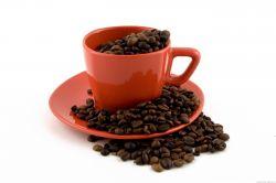 Empresas de Café en Grano para Bares