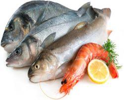 Distribuidores de pescado y marisco para bares for Canelones de pescado y marisco