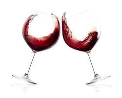 Empresas de Vino Tinto para Bares