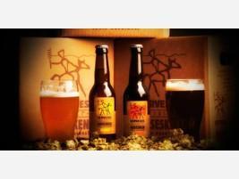 Para bares Cerveza Artesanal