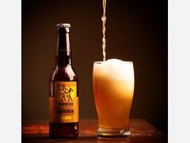 Para bares Variedad de cerveza