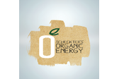 Scheckters Organic Energy Drink