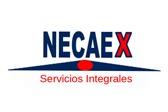 Necaex