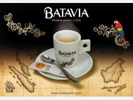 Variedades Batavia