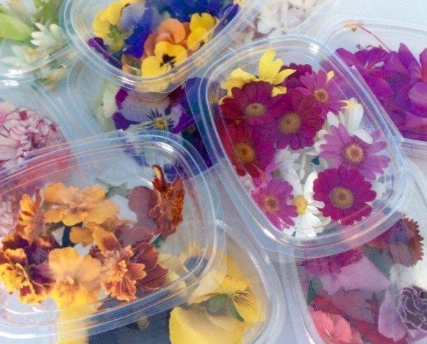 Flores. Flores comestibles