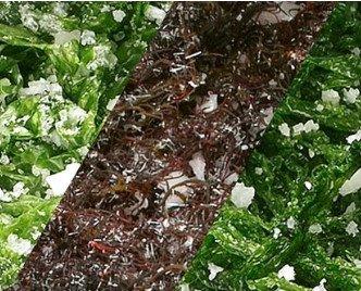 Algas Comestibles.En salazón