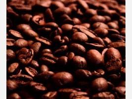 Proveedores Café