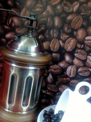Proveedores de Café. Café de los mejores orígenes
