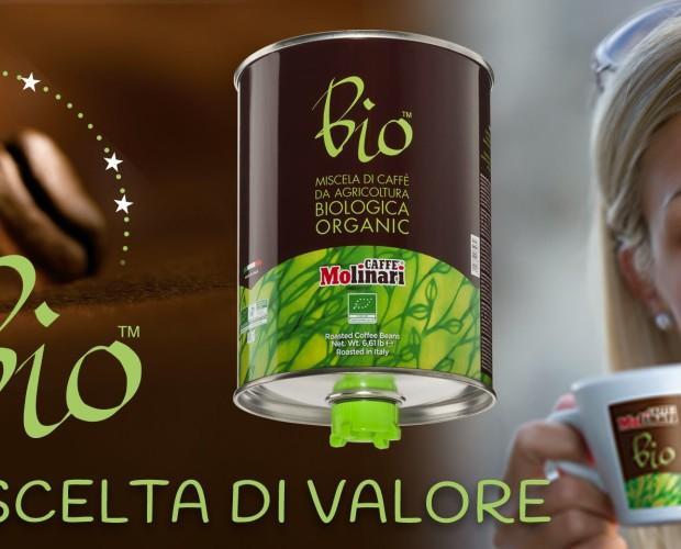 Café ecológico. Café de la más alta calidad