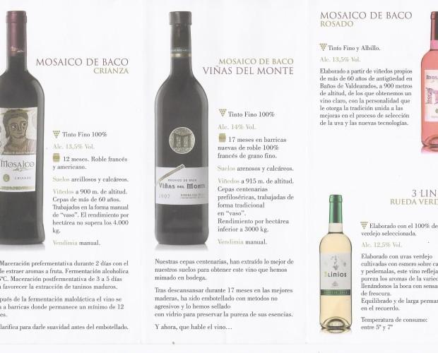 mosaico vinos.