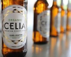 Cerveza Ecológica.Cerveza orgánica de gran calidad