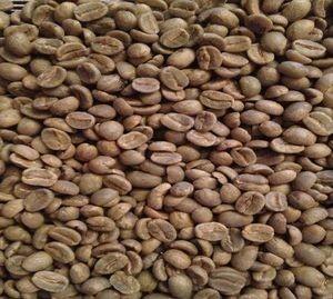 Café Verde.Los mejores cafés del mundo