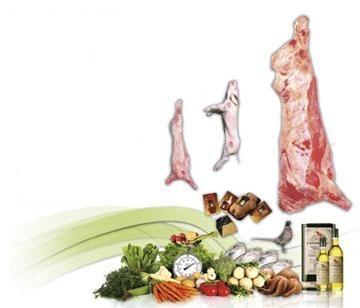 Proveedores de Carne. Distribuimos todo tipo de productos cárnicos