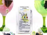 Sabores Gin-Tonic