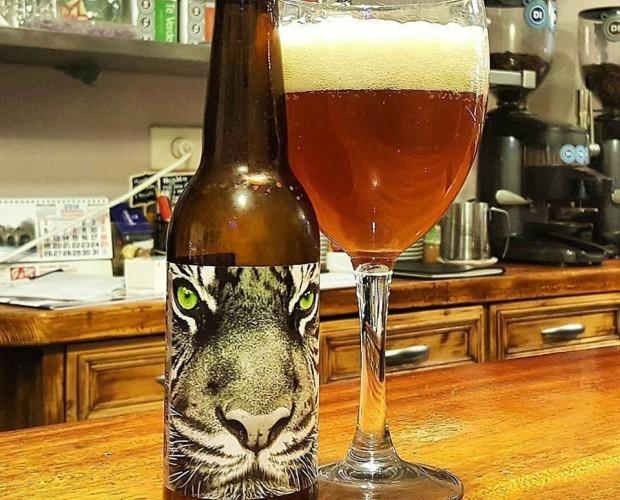 Cerveza Bengal. Cerveza Ipa de BREW & ROLL