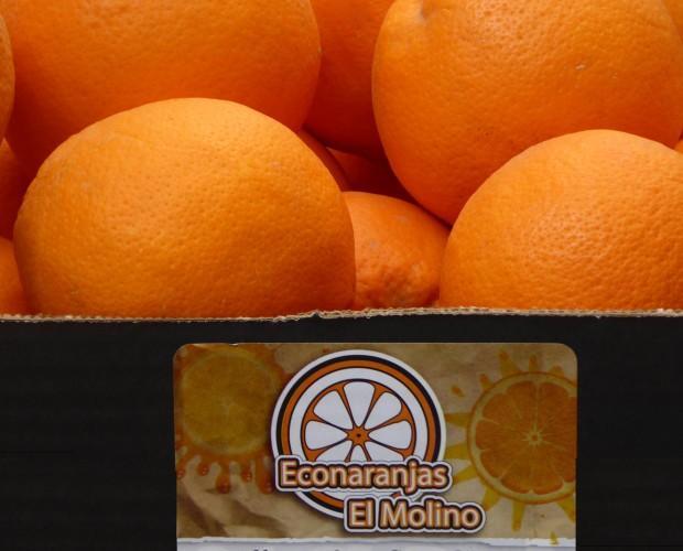 Frutas Ecológicas. Naranjas Ecológicas. Naranjas ecológicas certificadas