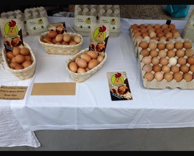 Huevos Frescos de Gallina.El mejor sabor