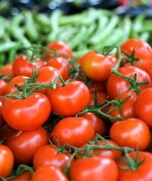 Tomates.Tomates frescos