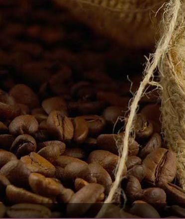 Proveedores de Cafè. Café de primera calidad al mejor precio.