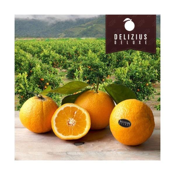 Naranjas Deluxe Lane. Naranjas de primera calidad