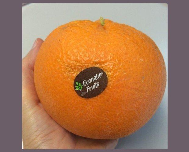 Naranjas econatur. Calidad a buen precio