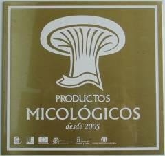 Conservas. Productos Micológicos