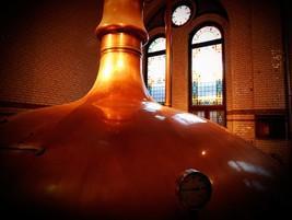 Productores de cerveza artesana