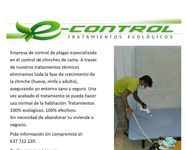 Eliminamos chinches en valencia. Tratamientos ecológicos contra chiches de cama. 100% efectivos.