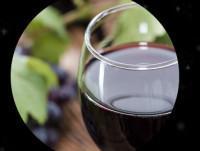 Heladode vino tinto