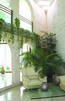 Decoración para Bares.Ambientes nuevos y cómodos.