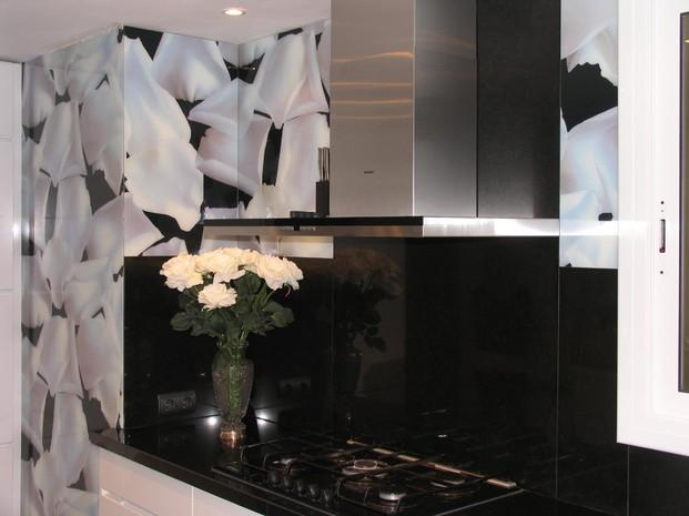 Para cocinas. Paneles de vidrio en cocina