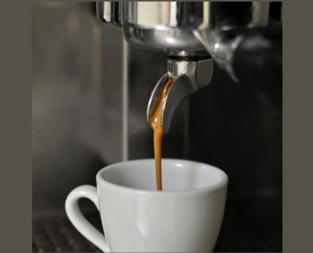 Café de alta calidad. Proveedores de café