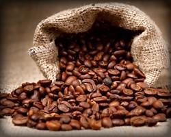 Proveedores de Café. Café arábica