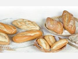 Proveedores Pan Precocido