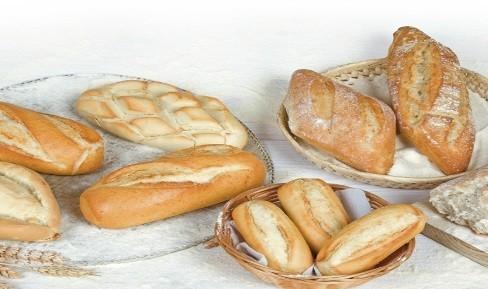 Proveedores Pan Precocido. Auténtico pan precocido andaluz