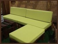 Cheilon verde