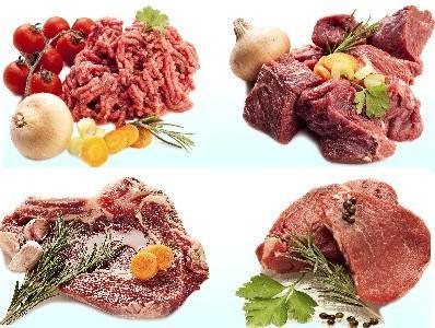 Mayorista de carne. Congelados, carne de aves, porcina y vacuna