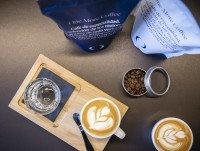 Presentación de café