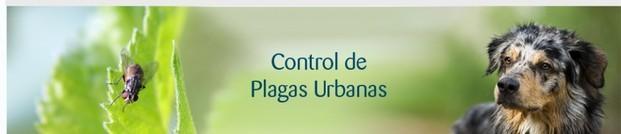 Control de Plagas. Todo tipo de plagas urbanas, con el mejor equipo