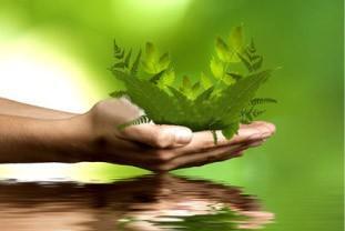 Consultoría medioambiental. Soluciones medioambientales