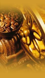 Proveedores café. Los mejores, provienen de Brasil y Colombia.