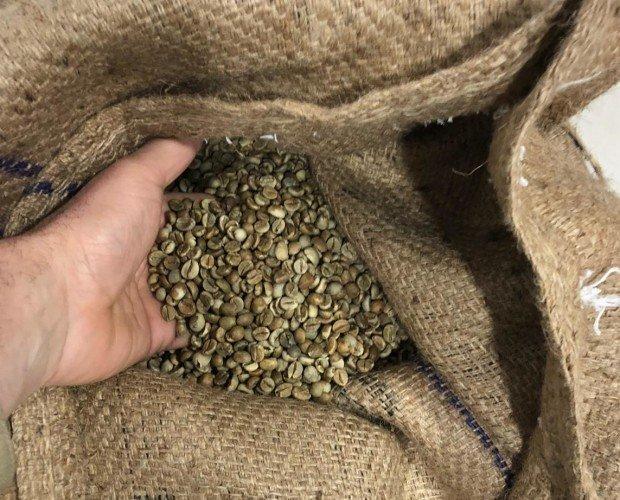 Tostador BuonGiorno. Nuestros granos de café