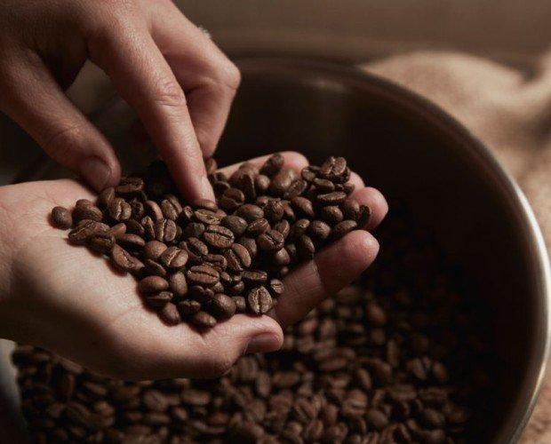Tostador BuonGiorno. Café en grano