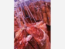 Mayoristas de carnes