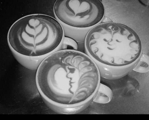 Proveedores de café. El arte del café
