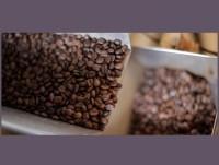 Cafe en grano segafredo